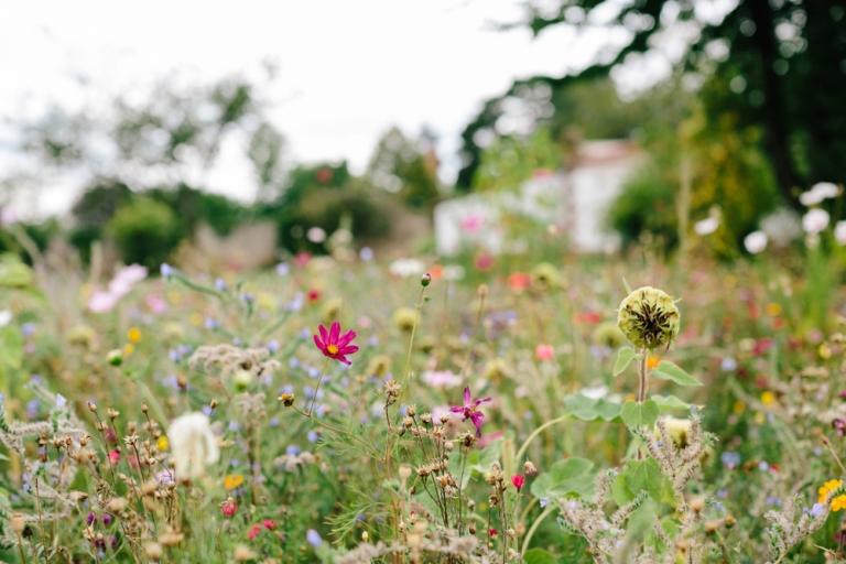 Hochzeitsfotograf Pfalz Haftelhof - 013